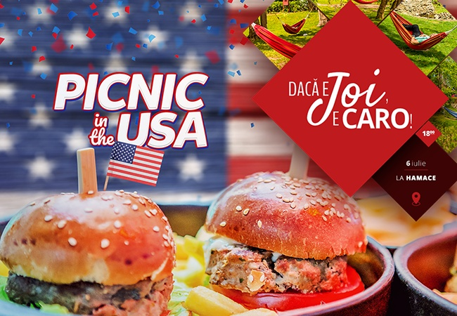 Picnic in the U.S.A: Caro Edition